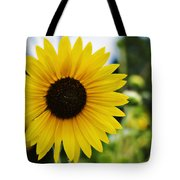 Common Sunflower Tote Bag