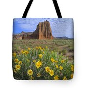 Common Sunflowers And  Temple Of The Sun Tote Bag by Tim Fitzharris