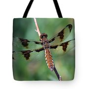Common White-tail Dragonfly Tote Bag