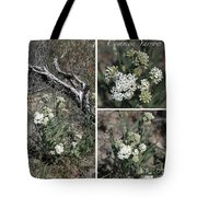 Common Yarrow Collage Tote Bag