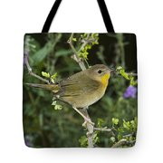 Common Yellowthroat Hen Tote Bag
