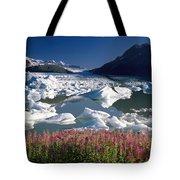 Composite View Of Colony Glacier W Tote Bag
