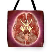 Conceptual Image Of Cranial Nerves Tote Bag