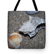 Conch 2 Tote Bag