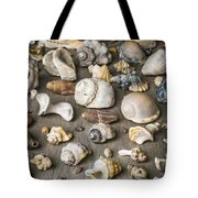 Conch Background Tote Bag