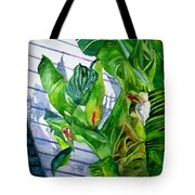 Conch House Tour Tote Bag