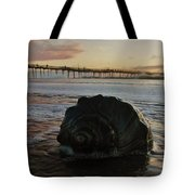 Conch Shell And Pier 2 10/17 Tote Bag