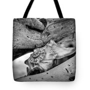 Conch Shell One Tote Bag