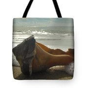Conch Shell The Point 1 12/5 Tote Bag