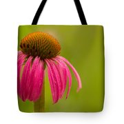 Coneflower - Summer Color Tote Bag