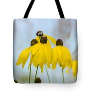 Coneflower And Bee 2  Tote Bag