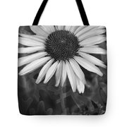 Coneflower And Dusty Miller Bw Tote Bag