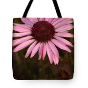 Coneflower And Dusty Miller Tote Bag