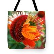 Coneflower Bloom Tote Bag