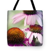 Coneflower Jewel Tones - Echinacea Tote Bag