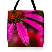 Coneflower Tote Bag