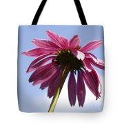 Coneflower  Tote Bag by Tony Cordoza
