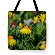 Coneflowers And Friend Tote Bag