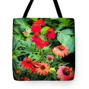 Coneflowers Echinacea Rudbeckia Tote Bag