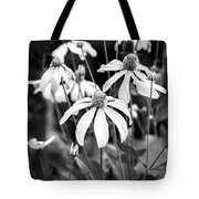 Coneflowers Echinacea Yellow Bw Tote Bag by Rich Franco