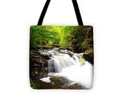 Conestoga Falls Tote Bag