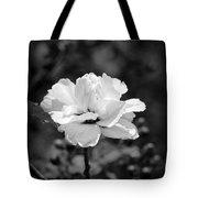 Confederate Rose Bw Tote Bag