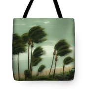 Confronting The Winds Tote Bag
