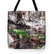 Confused Spring Or Winter Tote Bag