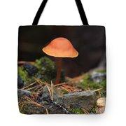 Conical Wax Cap Mushroom Tote Bag