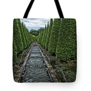 Conifer Lined Water Feature Tote Bag