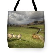 Coniston Sheep  Tote Bag