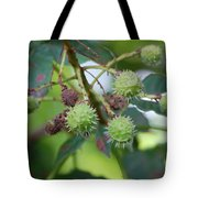 Conkers Tote Bag