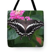 Constantines Swallowtail Tote Bag