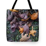 Starfish Constellation Tote Bag