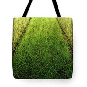 Container Art Tote Bag