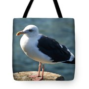 Contemplating Life Of A Sea Gull Tote Bag
