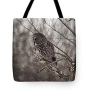 Contemplating Winter Tote Bag