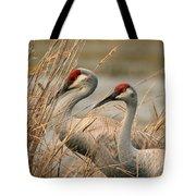 Content Pair Tote Bag