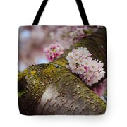Contrast 1. Pink Spring In Amsterdam Tote Bag