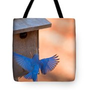 Contrast In Colors Tote Bag