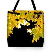 Contrast Of Autumn, Quincy California Tote Bag