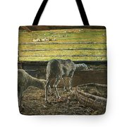 Contrast Of Light Tote Bag