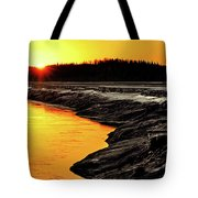 Contrasts In Nature Tote Bag
