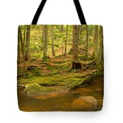 Cook Forest Rocks And Roots Tote Bag