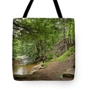 Cook Forest Toms Run Steps Tote Bag