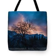 Cooks Meadow Oak At Sunset Tote Bag