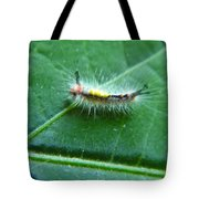 Cool Caterpillar Tote Bag