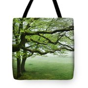 Cool Misty Day At Blackbury Camp Tote Bag