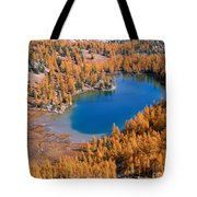 Cooney Lake Larches Tote Bag