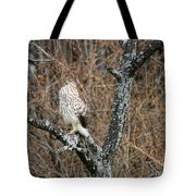Coopers Hawk 0741 Tote Bag